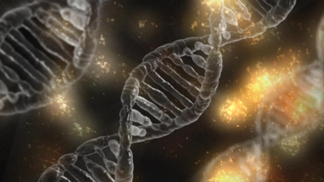 DNA nano technology